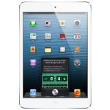 Apple iPad mini Wi-Fi - 16GB